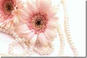 ピンクのガーベラ