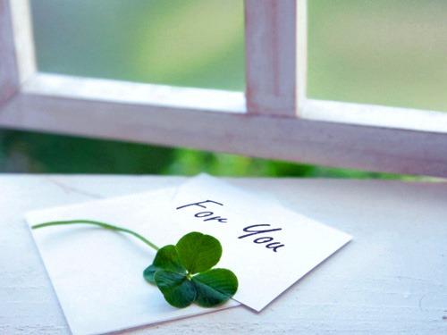 窓辺のあなたへの手紙
