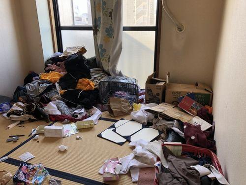 ゴミだらけの室内